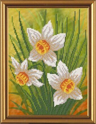 """""""Нарцисс"""" (4069)"""